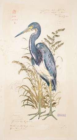 Feelingathome-Impression-sur-papier-fin-art--Tricolor-Heron-cm120x66-Sujet-Affiche-pour-cadre