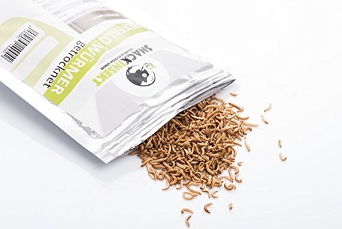 SnackInsekt Buffalo Würmer, gefriergetrocknet 50 g | zum Snacken und Verfeinern | in Europa gezüchtet und untersucht | für den menschlichen Verzehr | Knabberspaß mit wenig Kalorien