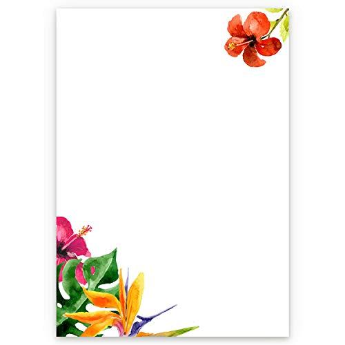ical Flowers I 50 Blatt Motiv-Papier mit Blumen in DIN A4 I Einladung Brief I Geburtstag Valentinstag Liebe Sommer I dv_426 ()