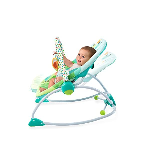 Bright Starts Playful Parade Baby to Big Kid Rocker Bright-Starts Seat can rock back and forth to soothe, or can be set to a fixed position for small babies and older toddlers Full body recline with 2 positions Soothing vibrations 8