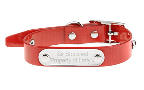 Hundehalsband Personalisierte Halsband Hundemake TPU bedruckt mit Namen und Telefonnummer