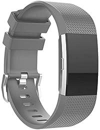 Scpink Correa para Fitbit Charge 2, Banda de reemplazo de Silicona Suave, Brazalete de Ejercicios para Fitbit Charge 2 (Gris)