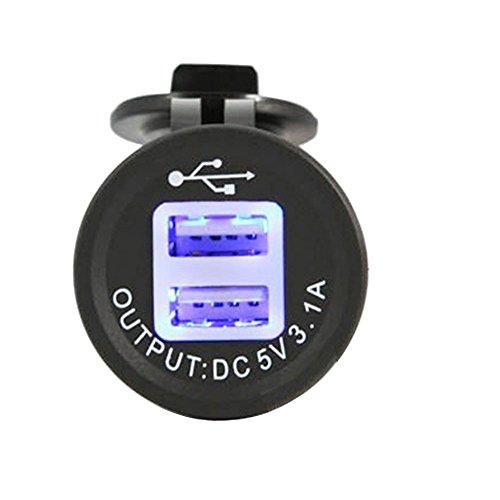 Linchview USB Steckdose 2 Port Einbau Auto RV Boots Motorrad USB Stecker 5V 3.1A Ladegerät Adapter 12V/24V KFZs für Navi, Handy, GPS mit Staubdicht/ wasserdicht Cover