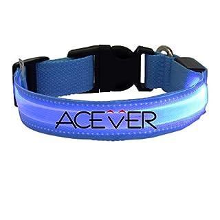 EliteShine Flashing Nylon LED Light Pet Dog Safety Collars (DD-WT) (Blue, XL)