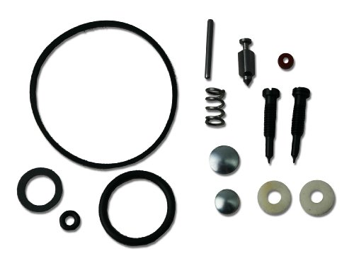 Briggs & Stratton 494349 Vergaserüberholungs-Kit