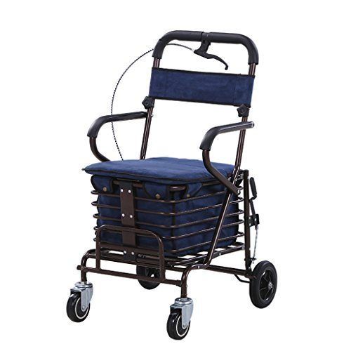 Chi Cheng Fang Electronic business Carritos de la compra Ligero plegable walker push scooter multifuncional viejo carrito de compras Grolator (Color : Blue)