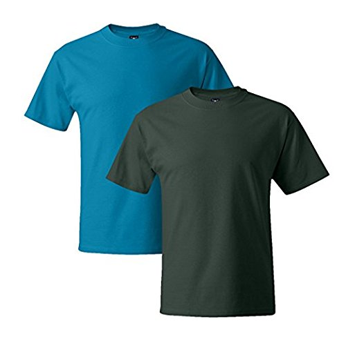 Hanes Mens 5180 Short Sleeve Beefy T 1 Deep Forest / 1 Teal