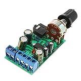 Sharplace Amplificador de Audio Módulo 1.8-12VDC TDA2822M 2.0 Canales 3,5mm