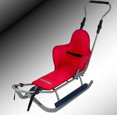 Sport Schlitten mit Lehne,Sitzauflage,Stange,Verschiedene Farbvarianten , NEU (silber-rot)