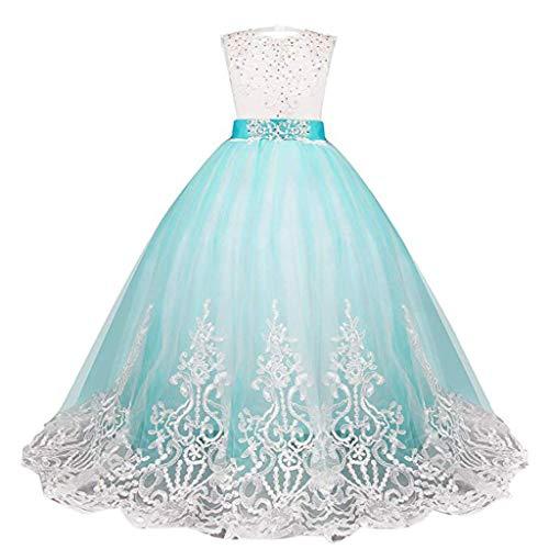 Blumenmädchen Hochzeit Kinder 5-13 Jahre alt Mädchen Tutu Kleid Spitzeblumenmädchenkleid Partykleid nachlauf Kleid Zeigen Dornröschen(Blau, 160)