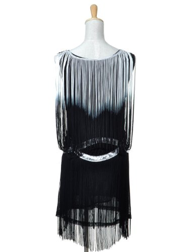 Anna-Kaci Frauen Fransen Troddel Trim Drop Flapper Silber verschönert Tropfen Taille Wrap Dress Cocktail Minikleid Kleid Weiß
