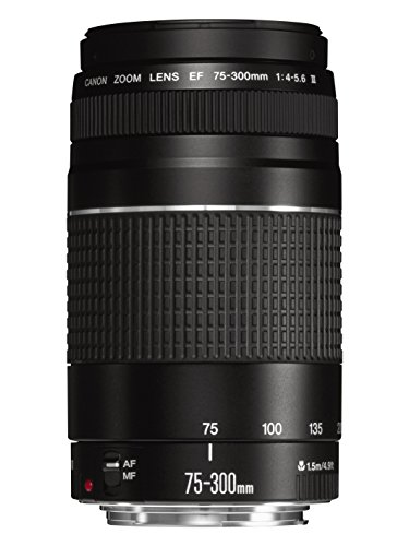 CANON EF 75-300MM/1:4 0-5 6 III - OBJETIVO PARA CANON (DISTANCIA FOCAL 75-300MM)