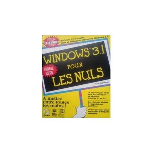 Windows 3.1 pour les nuls