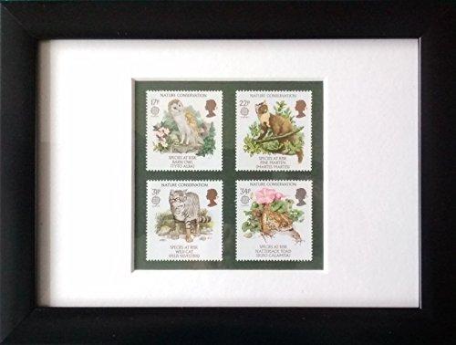 Conservazione della natura favolosa francobolli dal 1986