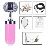 Microfono per Cellulare Universale artefatto Karaoke,Pink