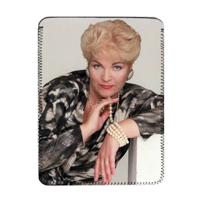 pam-st-clement-ipad-cover-protective-sleeve-art247-ipads-1-and-2