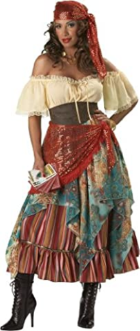 En Costumes de caract-re 147157 Fortune Teller Elite Collection Adult Costume - Brun - Petit