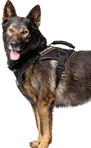 DINGO GEAR S03204 Militär-Hundegeschirr für Extreme Aufgaben, starker Griff, zuverlässiges Cobra-System, handgefertigt, XL