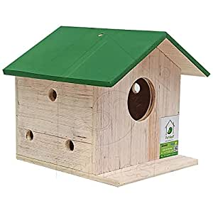 PetNest DIY Bird House Breeding Nest Box for Sparrow, Budgies and Finches for Kids