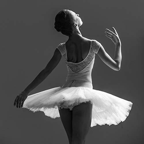 Postereck - Poster 2273 - Ballerina, Tutu Frau Klassik tanzen Tanz Kleid sexy SW Größe 1:1-40.0 cm x 40.0 - Ballerina Girl Kostüm