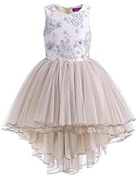 LA JINIRR Vestido Largo sin Mangas Floral de la Rodilla de la Princesa del Bordado de