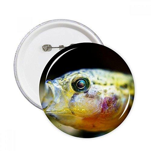DIYthinker Meeresorganismus Kleine tropische Fische Runde Stifte Abzeichen-Knopf Kleidung Dekoration 5pcs Geschenk Mehrfarbig XL -