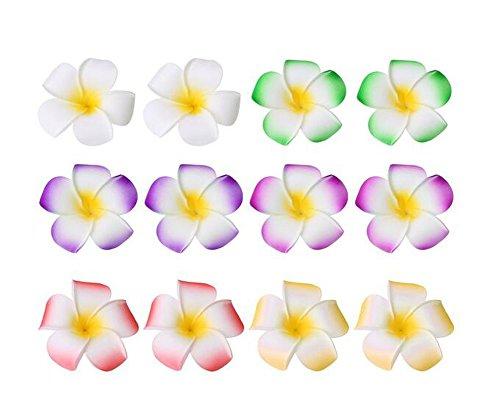 Haarklammern, buntes Blumen-Design, 6 cm, Hawaiianische Plumeria-Blüten aus Schaumstoff, für Hochzeiten, zufällige Farbauswahl, 12 Stück Orchidee-band