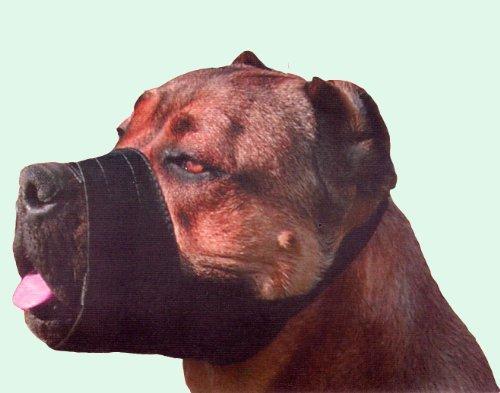 Quick Fit Maulkorb für Hunde aus Nylon, mittel Passt Schnauze Größe 17,8cm-8