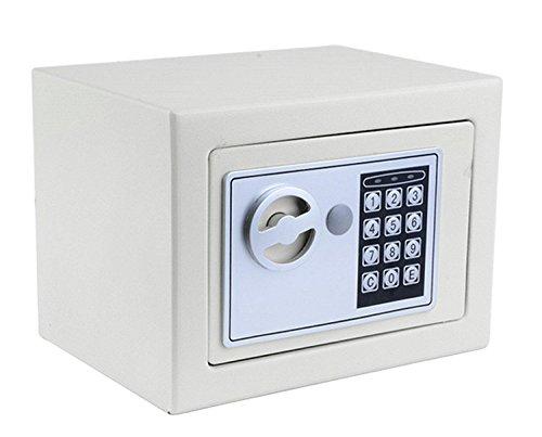 Lonlier Caja Fuerte Electrónica con Cerradura y Llave Caja de Seguridad Color...