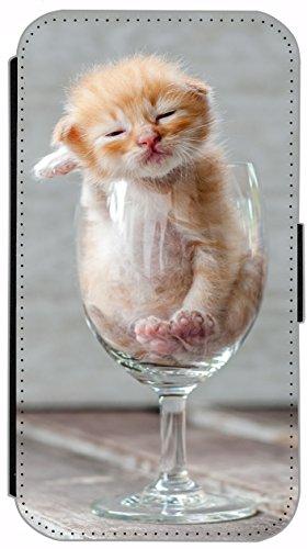 Flip Cover für Apple iPhone 6 / 6S (4,7 Zoll) Design 442 Katze auf Rücken Braun Blau Hülle aus Kunst-Leder Handytasche Etui Schutzhülle Case Wallet Buchflip mit Bild (442) 456