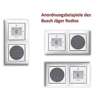 Busch Jäger Unterputz UP Bluetooth Radio 8217 U (8217U) alpinweiß KomplettSet im eleganten Busch balance SI/Radio + Lautsprecher + 2fach Rahmen 1722-914 + Abdeckungen