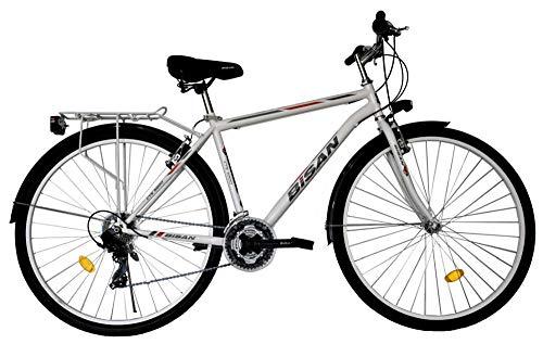 T&Y Trade 28 Zoll Jungen Herren City Trekking Jugend CITYBIKE Fahrrad Herrenfahrrad KINDERFAHRRAD CITYFAHRRAD Rad Bike 21 Gang Man Weiss 5200