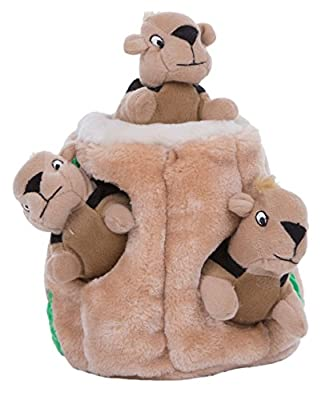 Kyjen Puzzle Plush Hide-A-Squirrel Dog Toy