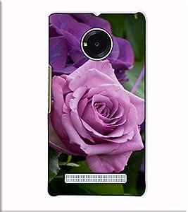Fuson Designer Back Case Cover for YU Yuphoria :: YU Yuphoria YU5010 (Purple Rose Theme)