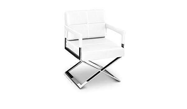 Neuerraum Dining Table Conference Table Arm Lehn Chair Lounge Chair Cocktail Armchair Stand And Frame Stainless Steel Polished Illustration Real Thick Leather Pure White Amazon Co Uk Kitchen Home