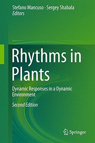 Preisvergleich Produktbild Rhythms in Plants: Dynamic Responses in a Dynamic Environment