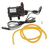 FLAMEER Mini Tauchpumpe Wasserpumpe Auto Wasser Pumpe 5,5 L/Min für alle Autos