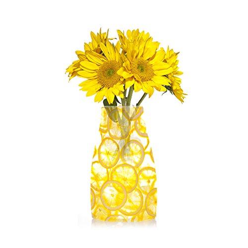 reva-expandable-vase-lemons