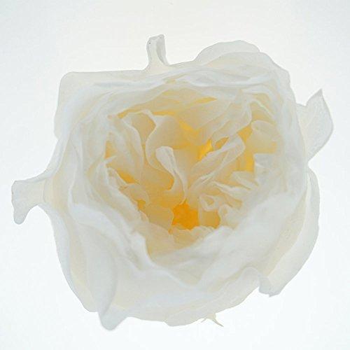 INVISIKAYAK Fiore Fresco conservato Austin Rose Fiore, 6 Pezzi Infradito Colorati Estivi, con finte Perline