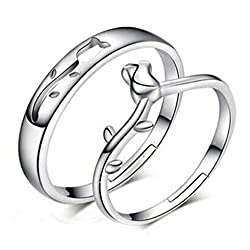19 Likes Silver Metal Couple Ring For Couple