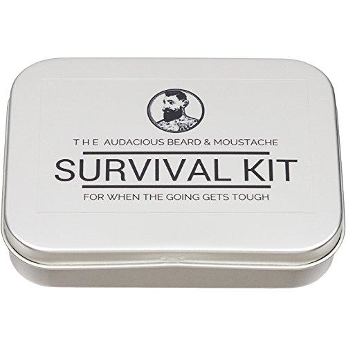 The-Audacious-Beard-and-Moustache-Survival-kit-The-Audacious-Beard-Co
