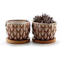 T4U 8.3CM Piña Maceta de cerámica vidriada Cactus suculento con bandejas de bambú marrón Lote de 2, decoración de casa y Oficina, Regalo de Boda, cumpleaños, Navidad