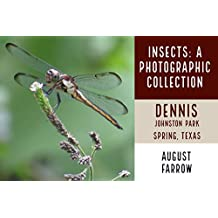 Insects: A Photographic Collection: Dennis Johnston Park: Spring, Texas (English Edition)