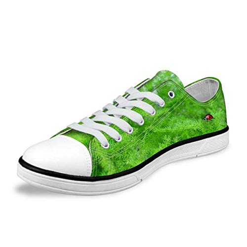 Low Tops Canvas Shoes Women Ladies Lace Up Plimsolls Breeath Walking Trainers Green UK 2 -