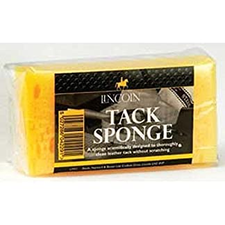 Lincoln Tack Sponge 7