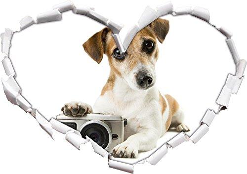cucciolo carino con fotocamera a forma di cuore in formato sguardo, parete o adesivo porta 3D: 62x43.5cm, autoadesivi della parete, decalcomanie della parete, decorazione della parete