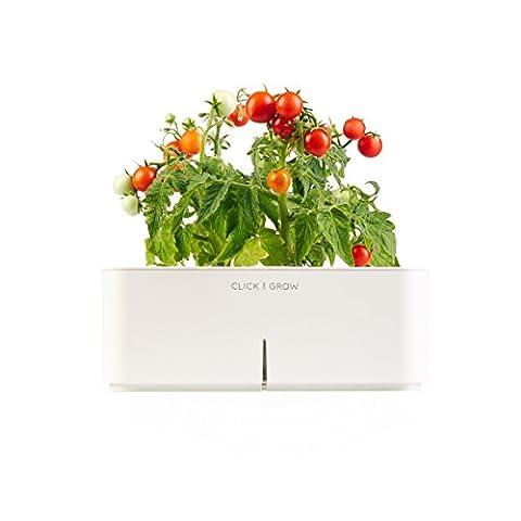 Click & Grow Smartpot Mini Tomato Indoor Grow Kit