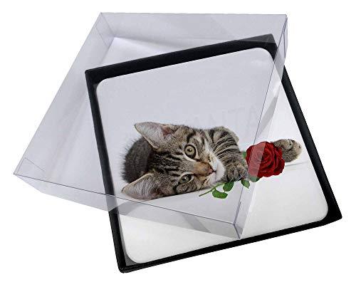 Advanta - Coaster Set 4X Tabby -Kätzchen-Katze mit roter Rose Bild Setzer gesetzt -
