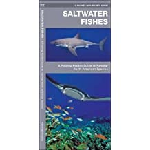 Saltwater Fishes: A Folding Pocket Guide to Familiar North American Species (A Pocket Naturalist Guide)