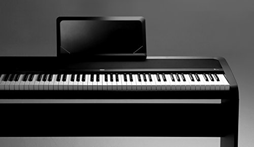 Korg B1-Bk - Piano digital, DC 12V, 88 teclas, negro